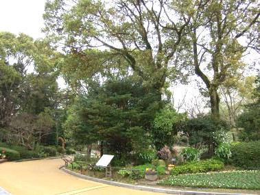 植物園通路