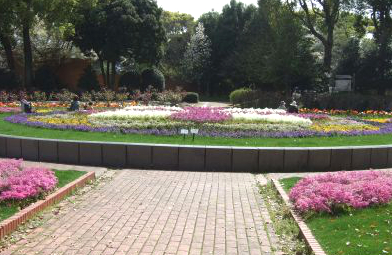 植物園バラ園