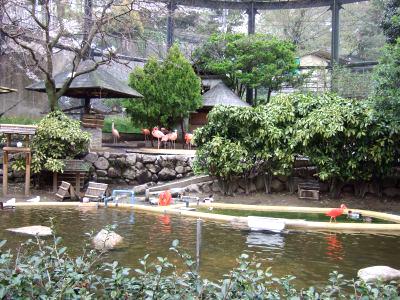 動物園放鳥舎1