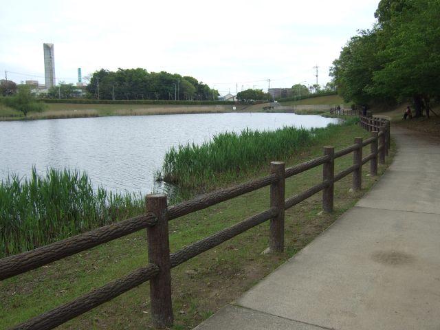 古賀市-千鳥ヶ池公園1