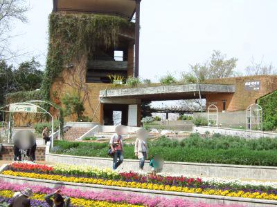 植物園ハーブガーデン