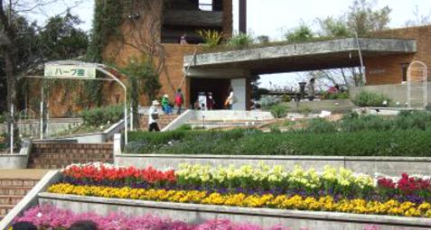 植物園ハーブ園