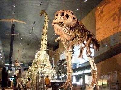 いのちのたび恐竜_400