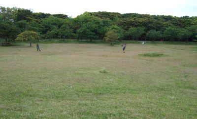 子供の広場芝生_400