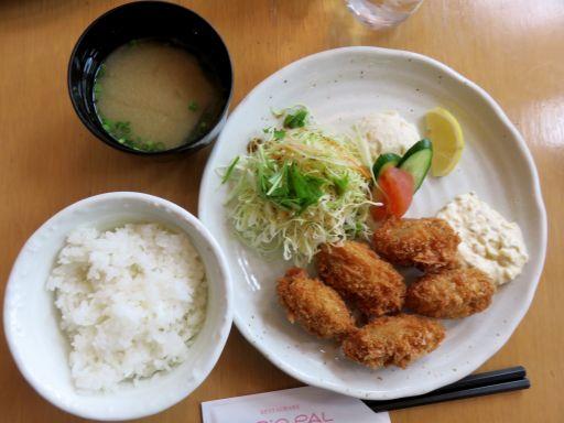 カキフライ定食_512