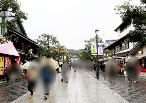 大宰府産道雨_512