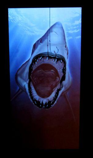 トリックアートサメ2_512