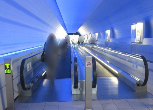 九博虹のトンネル_512