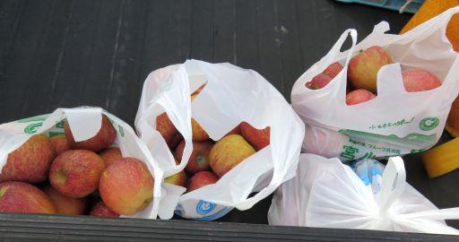 りんご園袋_512