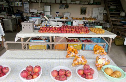 りんご園直売所_512