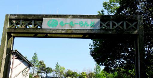 油山ゲート_512